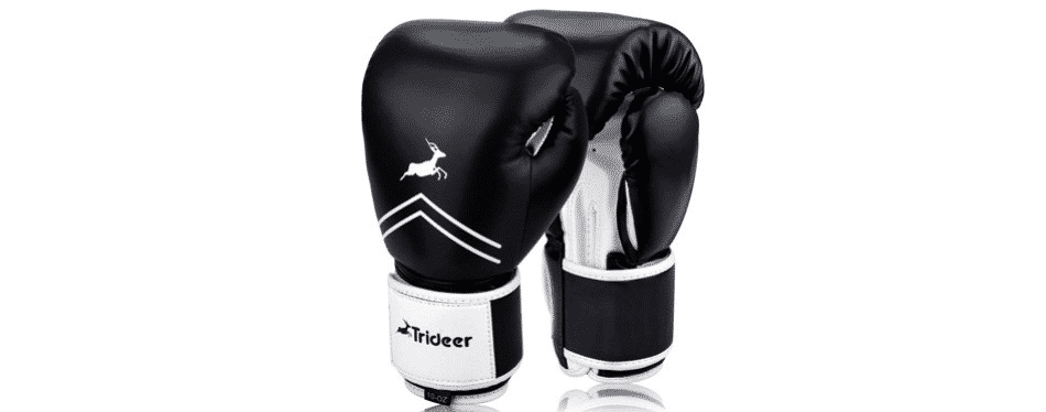 Budget Boxing Gloves