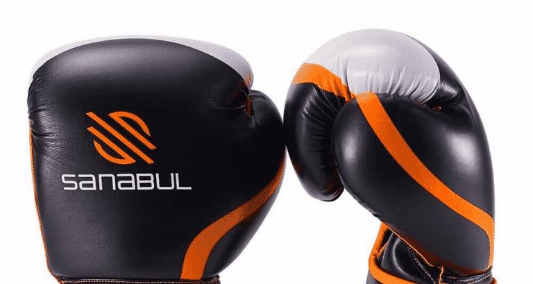 Sanabul Boxing Gloves